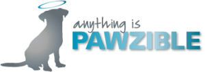 Anything Is Pawzible dog training in Chicago