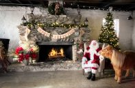 Christmas Photos in the barn at The Farm at SummitWynds