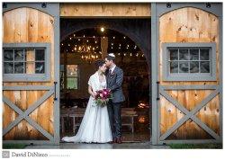 Stunning Barn doors