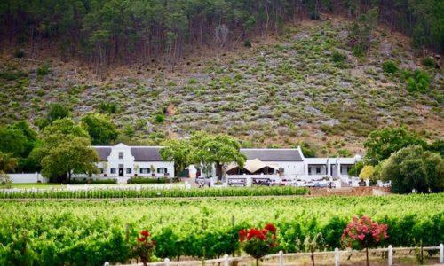 Franschhoek Wine Tram. South Africa.
