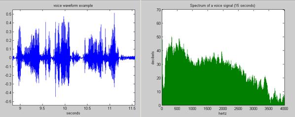 Voice waveform and spectrum