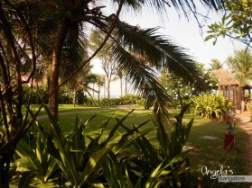 angela-carson-bangalore-chennai_weekeend-trip-vivanta-by-taj-fishermans-cove10