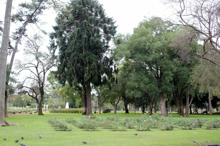 Paseo del Rosedal Rose Gardens in wintertime in Palermo, Buenos Aires, Argentina