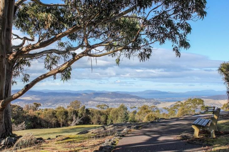 Mt Nelson Nature, Hobart, Tasmania, Australia