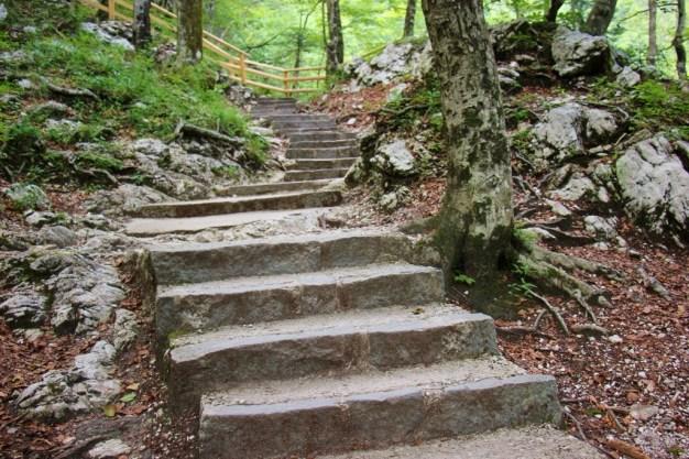 500 Steps lead up to Savica Waterfallon a Hike in Lake Bohinj, Slovenia