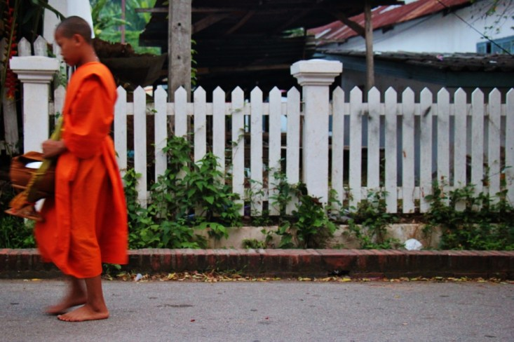 Monk walking barefoot for morning almsgiving in Luang Prabang, Laos