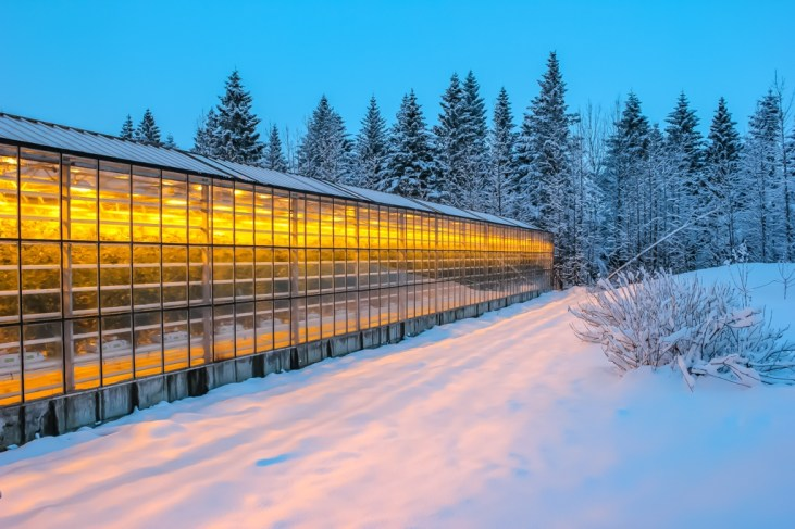 Greenhouse, Fridheimar Greenhouse