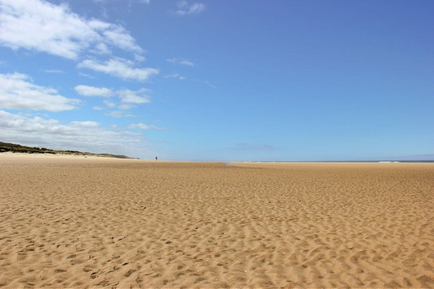 Wide beach at end of Tahkenitch Creek Trail near Florence, OR