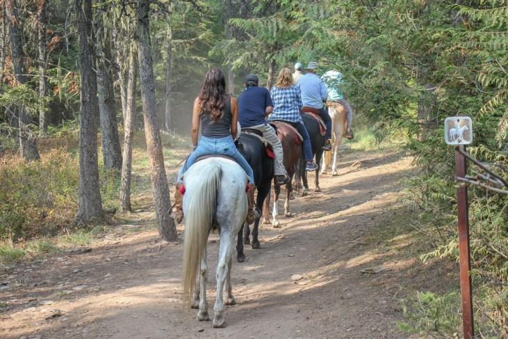 Get around by Horseback Riding, Glacier National Park, Montana