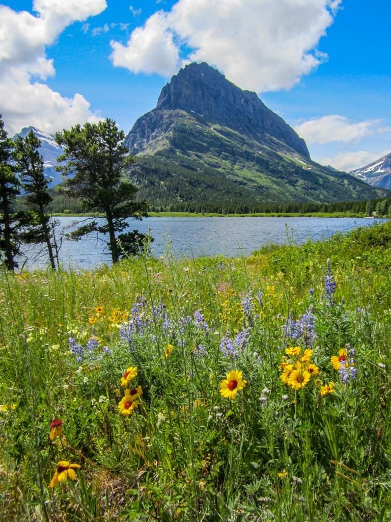 Springtime View on Swiftcurrent Lake Trail, Glacier National Park, Montana