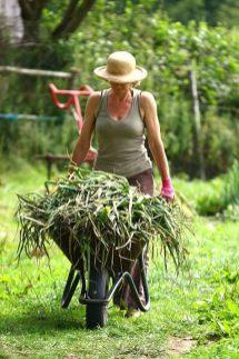 chagfood-onion-wheelbarrowful