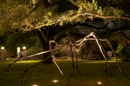 Sydney and Walda Besthoff Sculpture Garden; Louise Bourgeois, sculptor; Lee Ledbetter, architect; Sawyer Berson, landscape architects; for New Orleans Museum of Art