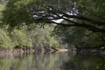 Chipola River; Skye Development Co.