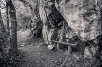 Resting Bench Near Blarney Castle; County Cork