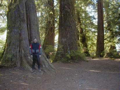 """Gary and """"Worlds Largest Sitka Spruce"""""""