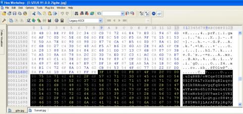 steganograpgy Zeus malware hex