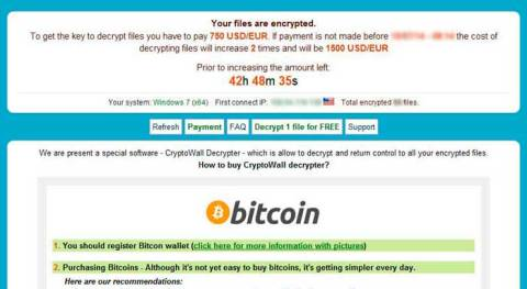 cryptowall ransomware decrypt-service