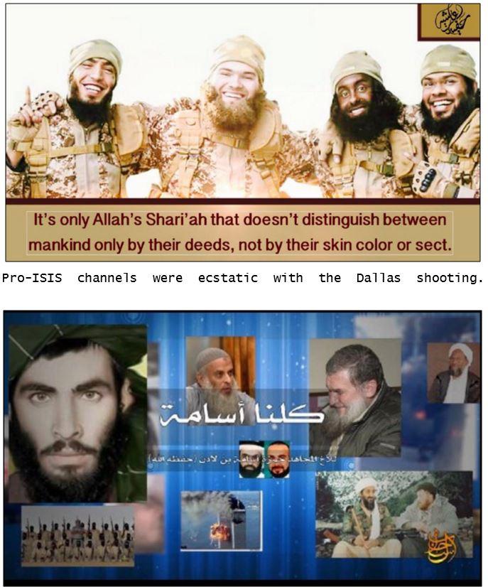 Terrorism jihad report 11