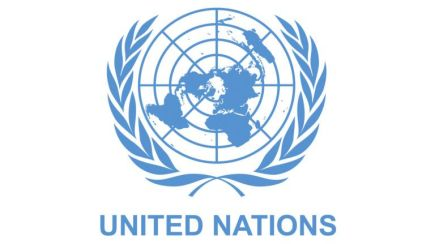 united nations cybercrime resolution