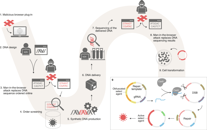 Malicious DNA injection performed by a remote cyber-criminal