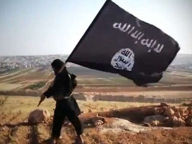 ISIS an initial overview