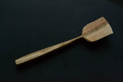 spatula (3 of 4)