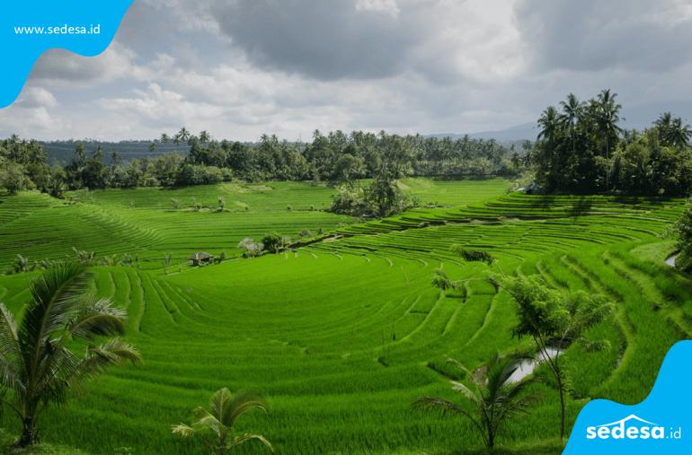 Tipe Desa yang Termasuk Dalam SDGs Desa