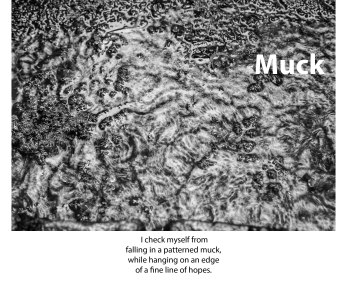 """Muck"" --- from the portfolio, Fragility, Transience and Transcendence"