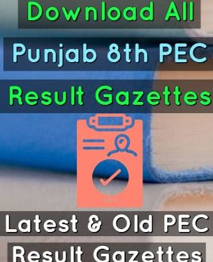 Download 8th Class PEC Result Gazettes 2019 All Punjab Districts
