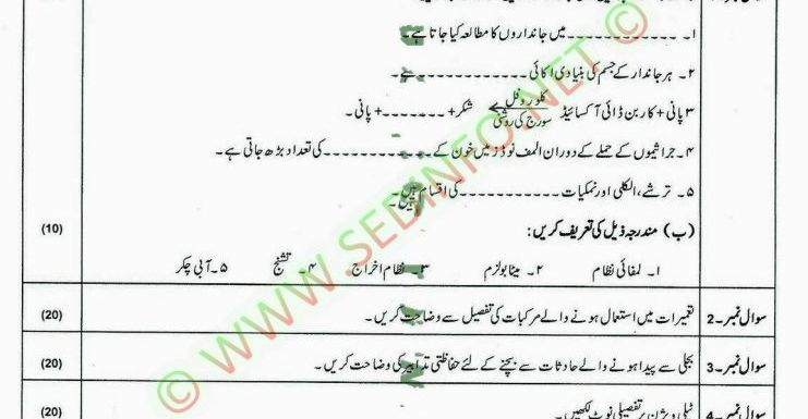 AIOU Matric Code 203 Past Papers Autumn 2010