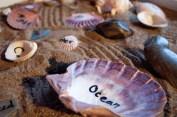 Seashell poetry zen garden by Lydia Sullivan