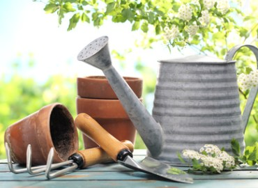 Aromatherapy Recipes for Gardeners: Photo credit, Fotolia