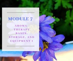 Certificate in Holistic Aromatherapy Module 7