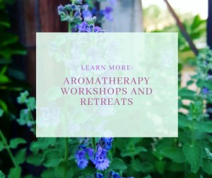 aromatherapy workshops and retreats