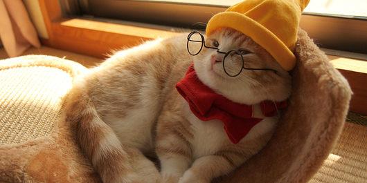 人生初の眼鏡を購入!「せどり」には広い視野が必要です