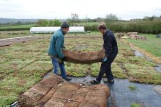 Suppliers of Green Roof Systems based in Wiltshire UK