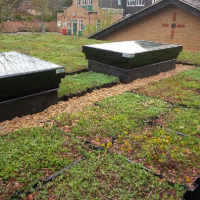 Essex.S.Pods or modular trays being laid for a Sedum Green Roof