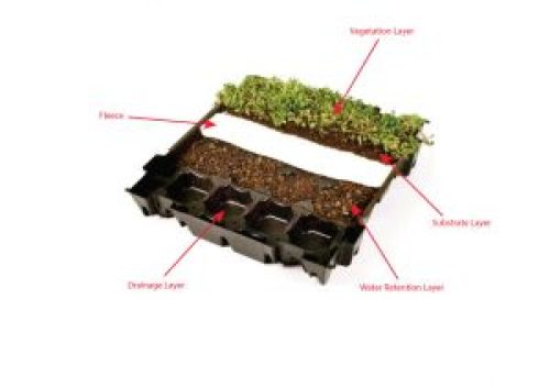 Sedum_tray_diagram or S.Pod modular system ready for a Green Roof