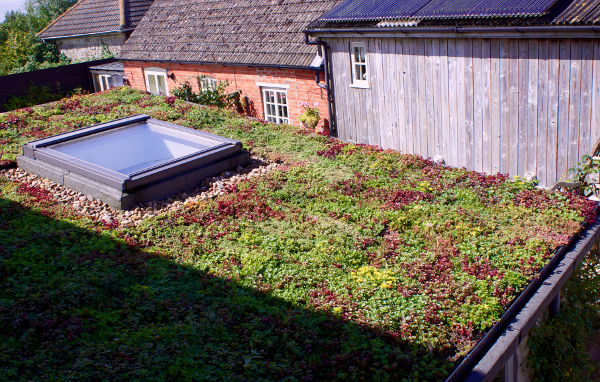 Sedum Green Roof British Sedum Green Roof And Walls
