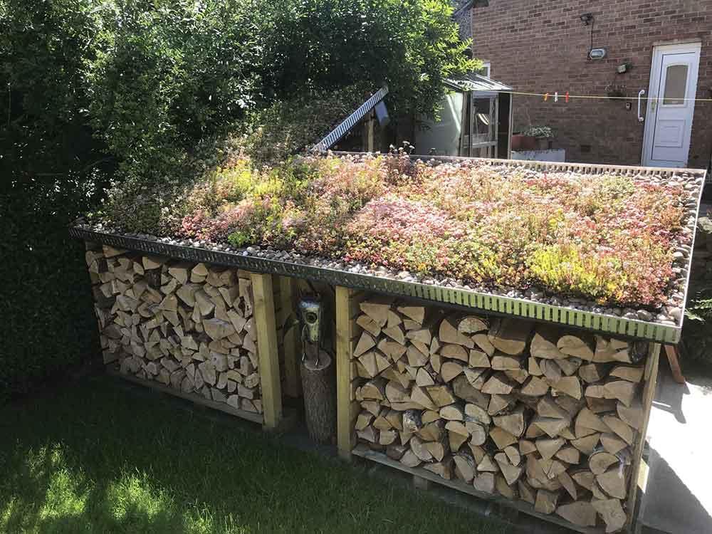 UK Sedum DIY roofs recent jobs
