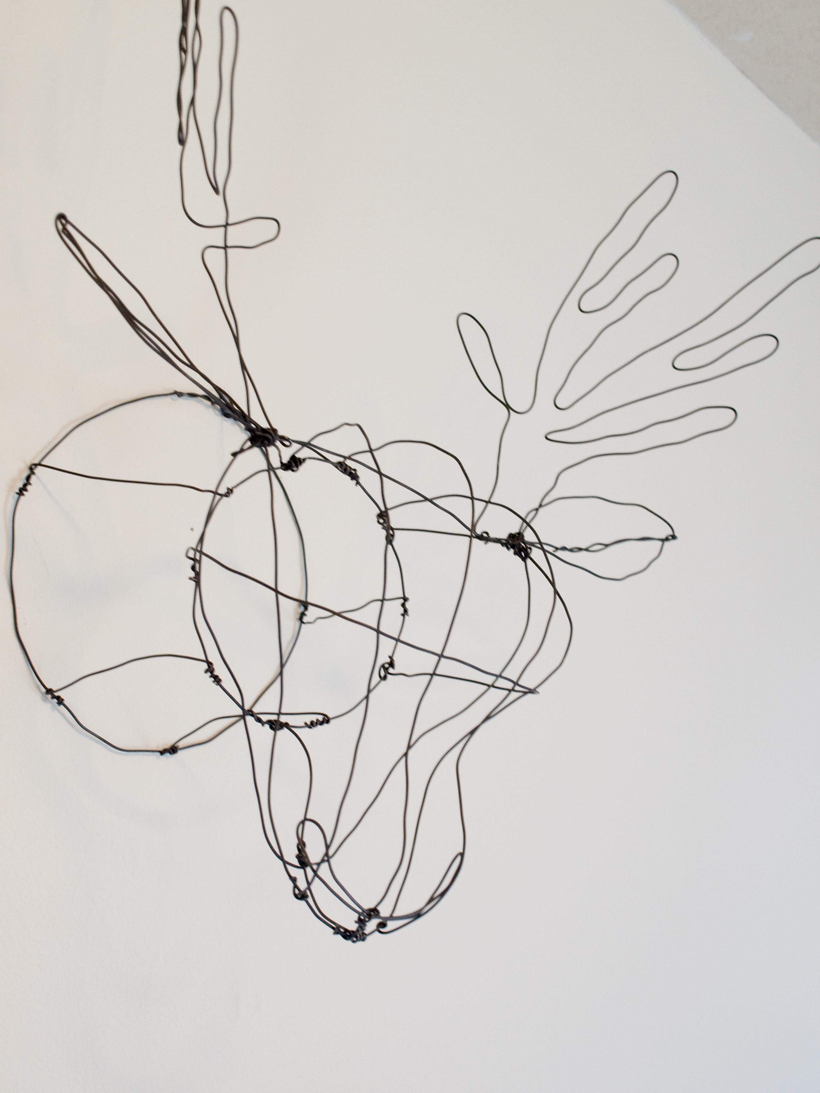 DIY Faux Taxidermy | Wire Deerhead Pinterest Project