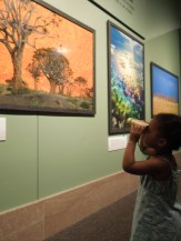 Toddlers use binoculars to take a closer look during a safari at the National Museum of Natural History.