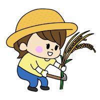 稲刈りをする女の子