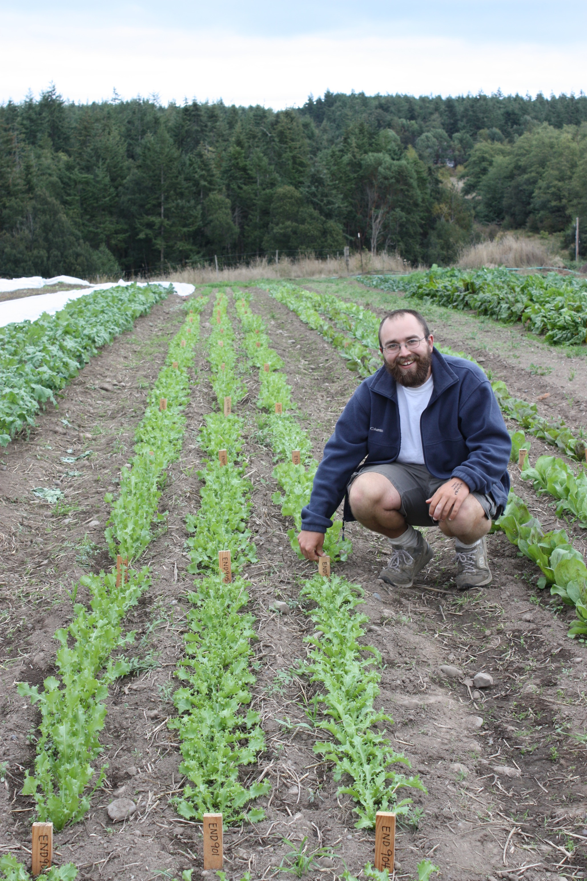 Learn How To Identify The Best Varieties For Your Farm