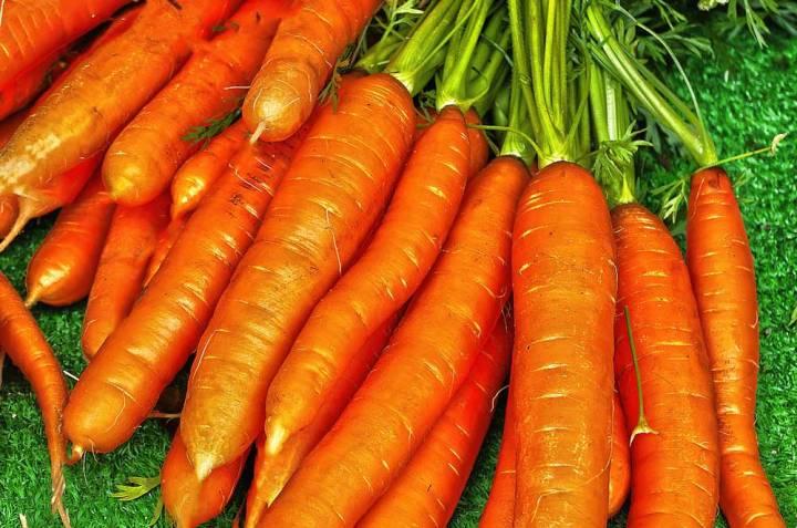 Carrot Nantes