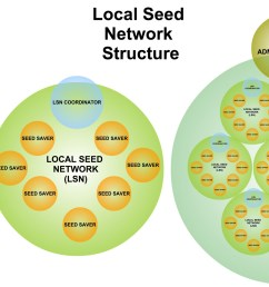 local seed network structure diagram [ 2000 x 1066 Pixel ]