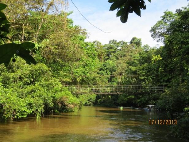 Mulu Nutmeg location 05 IMG_4274.JPG