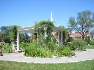 Children's garden 7