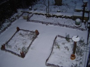 The herb garden in winter