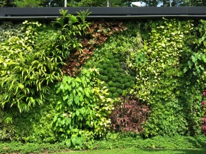 Vertical garden at Changi, Singapore